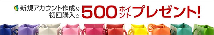新規アカウント作成&初回購入で500ポイントプレゼント!